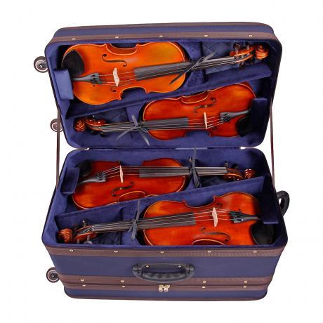 AMATO Multi 8 étui violon