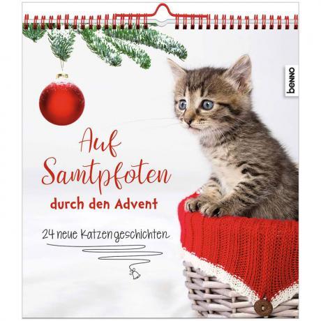 Auf Samtpfoten durch den Advent – 24 neue Katzengeschichten