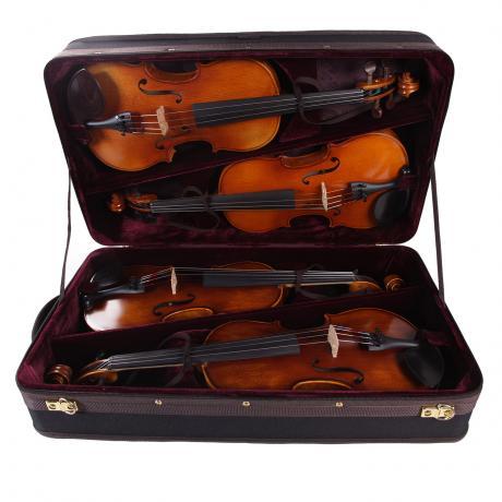 PACATO Quadriga étui violon