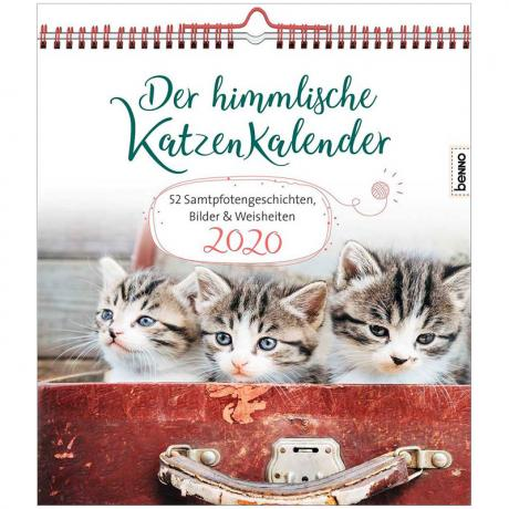 Der himmlische Katzenkalender 2020 – 52 Samtpfotengeschichten