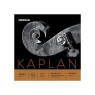 SOLO cordes contrebasse JEU de Kaplan