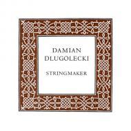 Damian DLUGOLECKI corde violon La