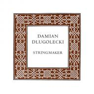 Damian DLUGOLECKI corde alto La