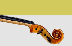 boutique violon