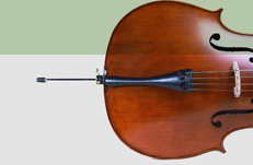 boutique violoncelle